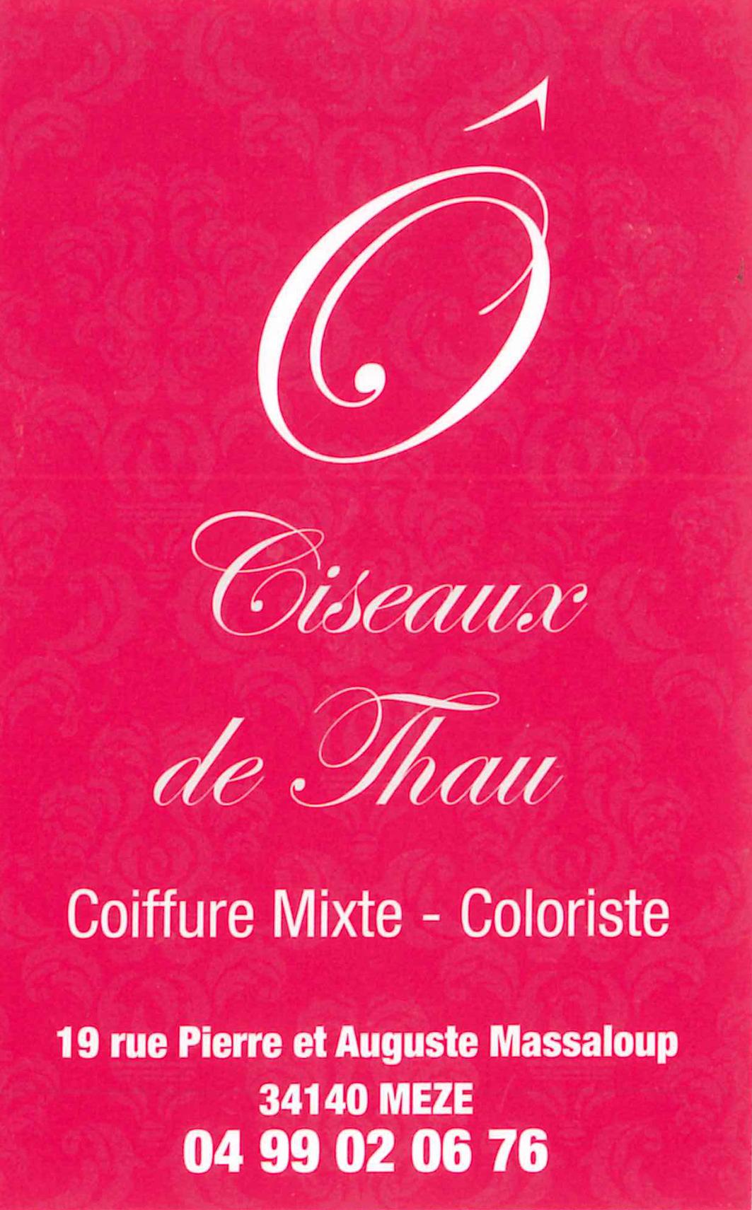 Ciseaux de thau