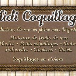 Midi coquillage